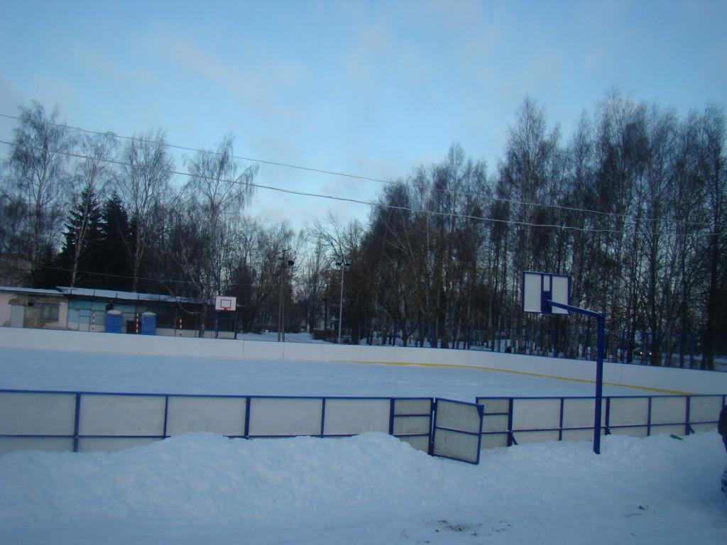 Хоккейная коробка в с.Шунга Кострома