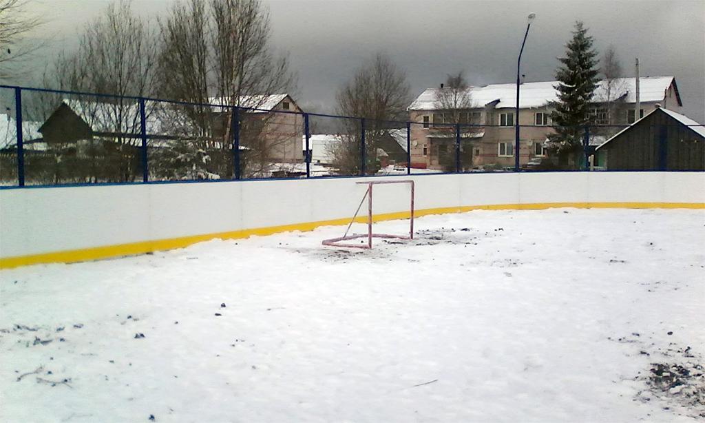 Хоккейный корт в Борисово-Судское - Формат-спорт