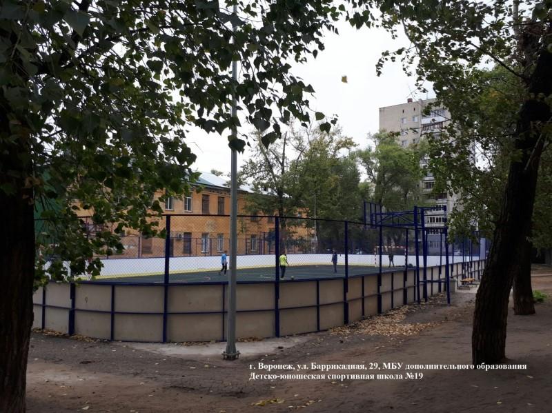 Универсальные спортивные площадки (Воронежская обл. ) 2